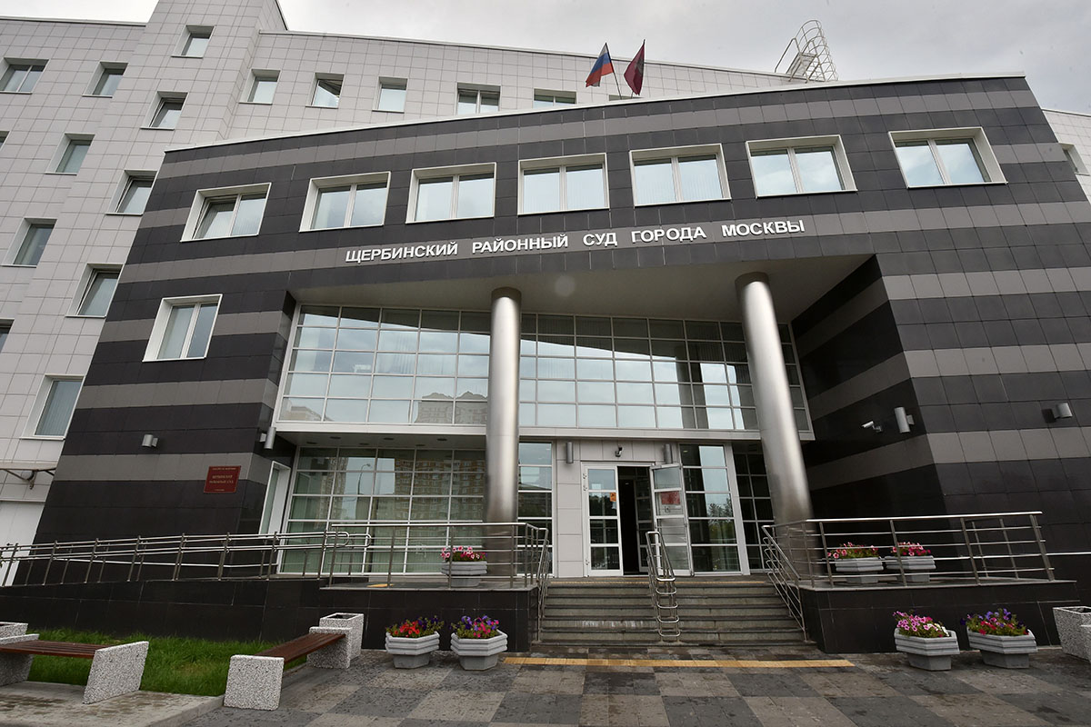 Новая «народная» статья. Сколько стоит ударить представителя власти вМоскве?