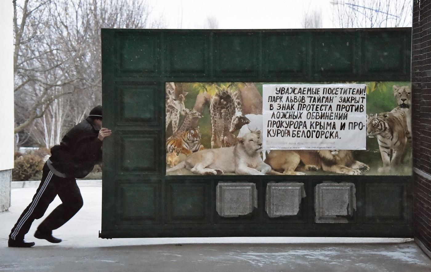 Укротитель львов ивраг «Единой России»: Олег Зубков озакрытии своего парка «Тайган»